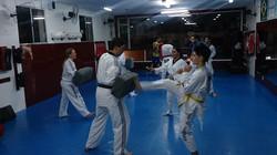 Taekwondo Zona Sul