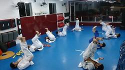 Judo Brooklin