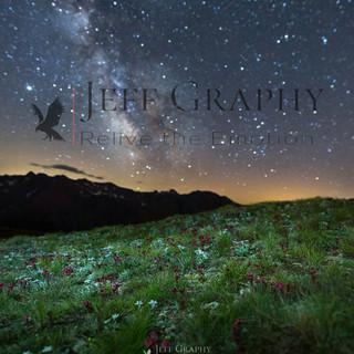 Edelweiss et Joubarbe sous les étoiles