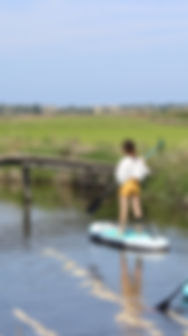 STAND UP PADDLE RICE FIELDS COMPORTA