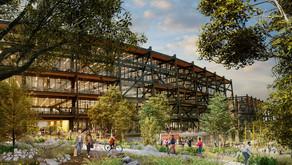 Post-COVID: los diseños de oficinas demandan espacios de trabajo permanentes al aire libre