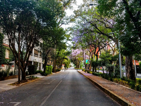 5 zonas de la CDMX en donde la vivienda aumentará su plusvalía