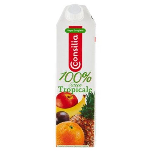 100% Tropical Juice                         1L