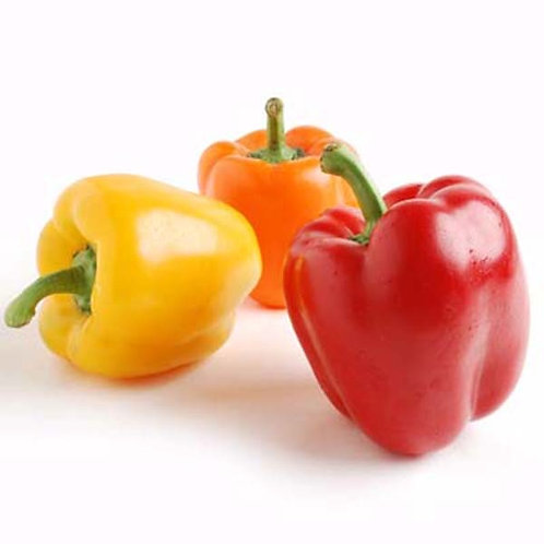 YELLOW OR RED PEPPER                                     1PC(APPROX.400GR)