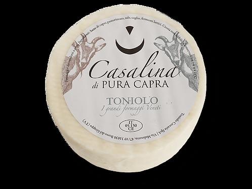 CASALINA DI PURA CAPRA                               650 GR (APPROX.)