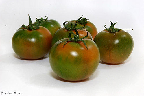 Camone tomatoes    500GR (APPROX.)