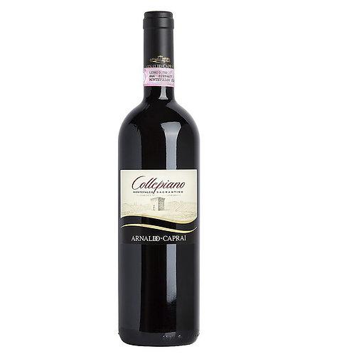 RED WINE SAGRANTINO DI MONTEFALCO DOCG  2015