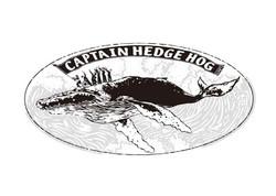 CAPTAIN HEDGE HOG