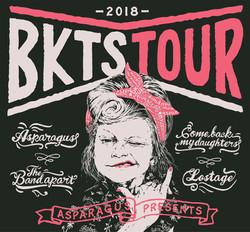 BKTS TOUR 2018 BACKDROP