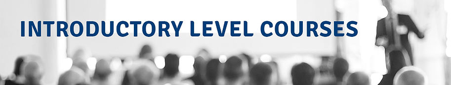 intro level courses banner.jpg