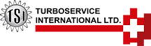 logo%20tsi%20(1)_edited.png