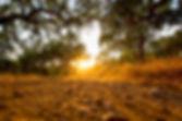 hiking-alentejo-campos.jpg
