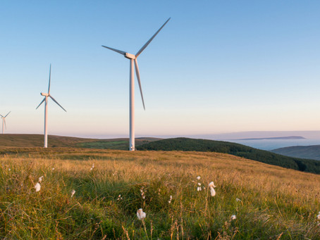 ESG investing: The impact climate change could have on your investments