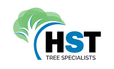 hsttreespecialist