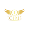 ICIRIS Logo 2.png