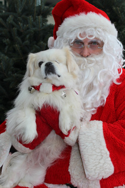 Dec. 10 Santa Photos Canadian Pet Co