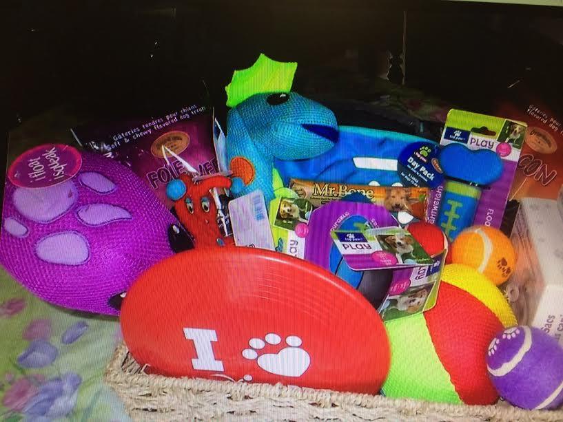 Dog - themed basket