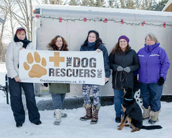 Doggy Donation Drive