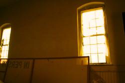 Shakin Macon Windows