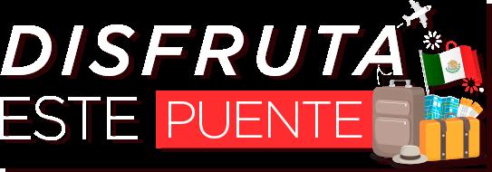 logoPuente2019.png