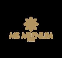 ms_milenium.png