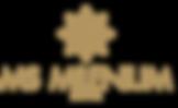 Logo_Hotel MSMilenium.png