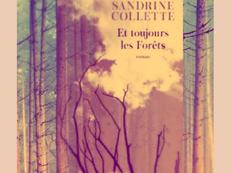 Et toujours les forêts de Sandrine Collette