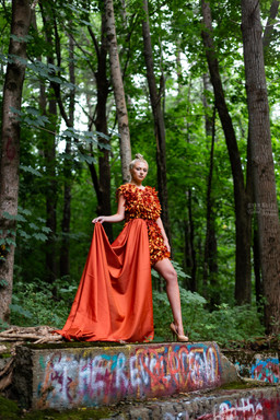 Sass in the Woods