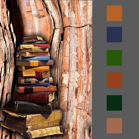 Color_Story.jpg