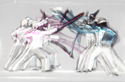 Fencing Motion Study