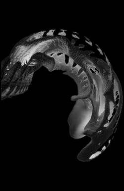 Object 1 - Image 2