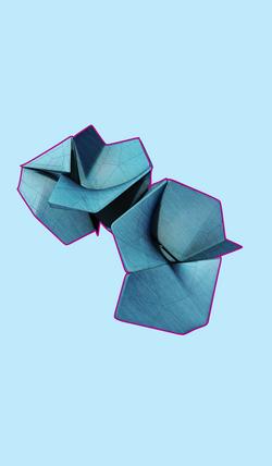 Aggregation Formation (3)