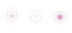 Baroque_Process 2