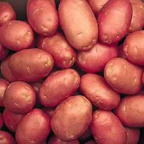 25kg sack Shannon Potatoes