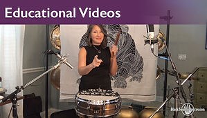 SSP_2020_educational videos.jpg
