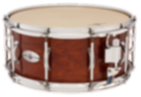 "Black Swamp Percussion Pro10 Studio snare drums are ideal concert band and orchestra drums for schools. The Pro10 Snare System is designed to be highly adjustable for excellent snare response, but in a ""set it and forget it"" design."