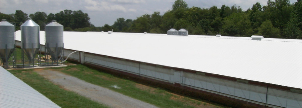 Duracool Coating Application on Chicken Farms