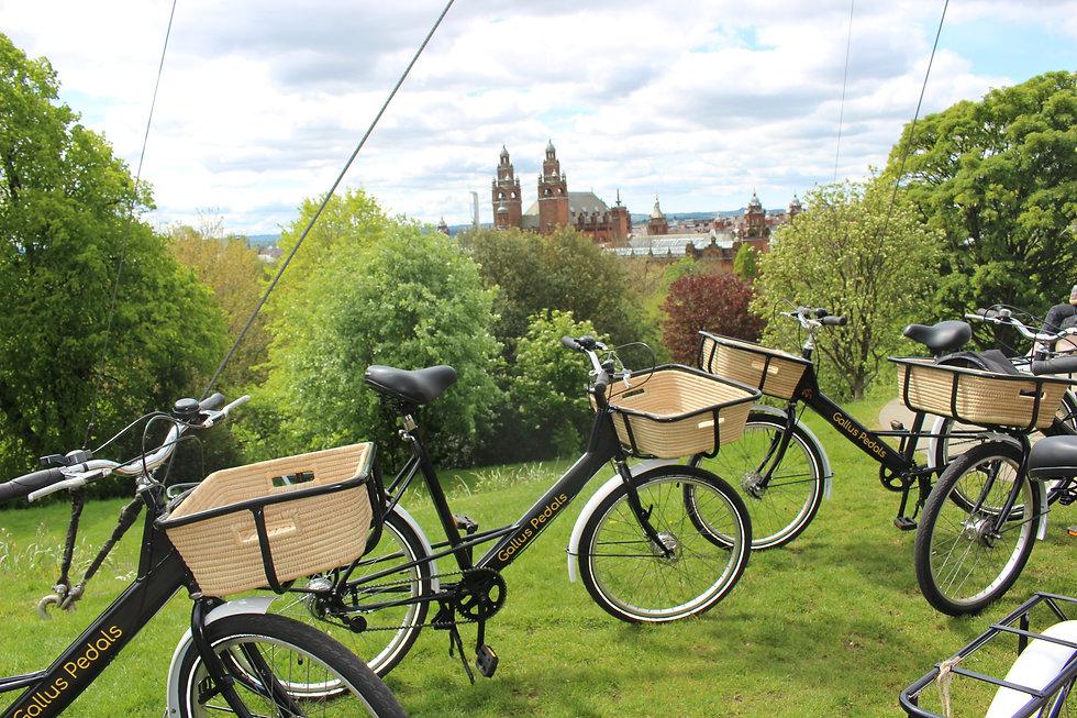 Gallus Pedals Bikes