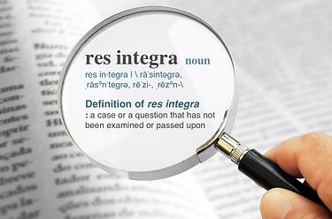 Res Integra Dictionary Def.png