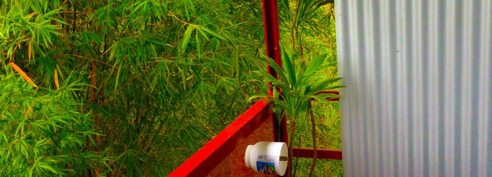 BIRDS Bathroom.JPG