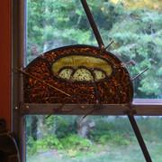 Bird's Nest - Detail
