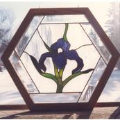 Iris Octagon