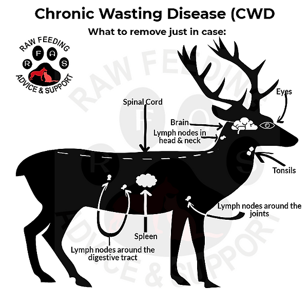 cwd_34118946.png