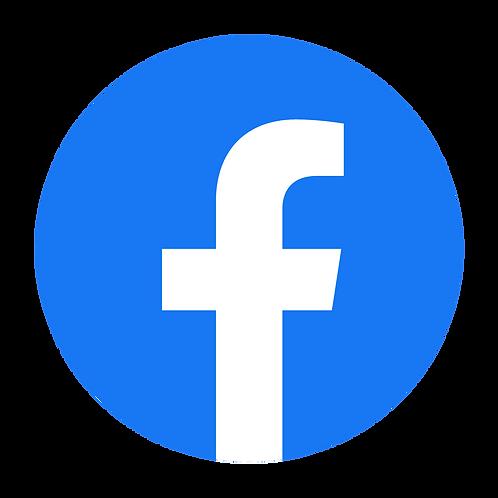 Facebook Ad Campaign - Five Day