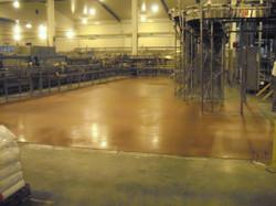 DB Brewery