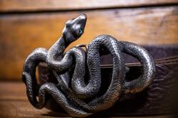 Snake Silver Alloy