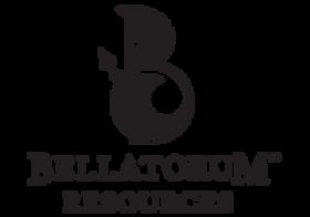 BR bigger-logo.png