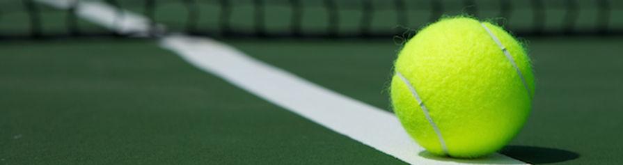 ball on court eblast footer.jpg