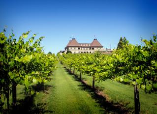 Tennis & Tastings at Chateau Elan Winery