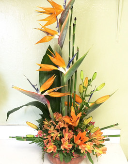 Tropical Arrangement w/Seasonal Flowers